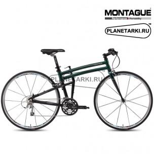Montague Fit 2015